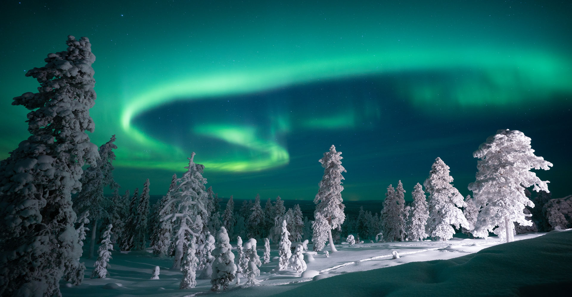 Octola-stunning-northern-lights